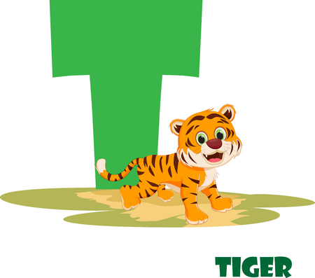 Cute Animal Zoo Alphabet. Letter T for tiger Illustration