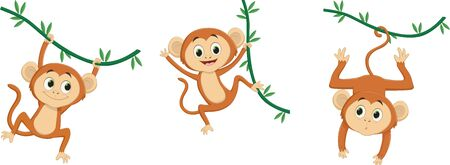 Cartoon monkey hanging on white Imagens - 139387547