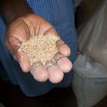 orphanage: Orphanage mother shows donor grains for family Stock Photo
