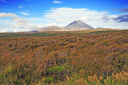 tongariro national park: Mount Ngauruhoe in Tongariro National Park, New Zealand  Stock Photo