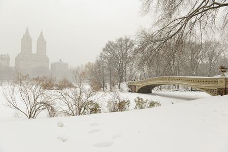 雪の中、マンハッタン、ニューヨークのセントラル ・ パーク