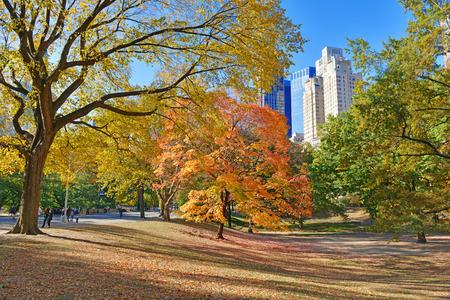 セントラル ・ パーク、ニューヨーク マンハッタンの秋の色秋の紅葉