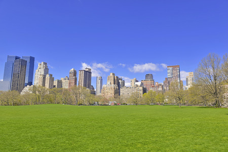 Manhattan skyline from Sheep Meadow in Central Park, New York City  photo