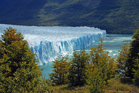 el calafate: Perito Moreno Glacier, Patagonia, Argentina  Stock Photo