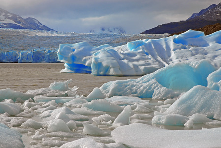 el calafate: Icebergs in the Sea, Patagonia, Argentina