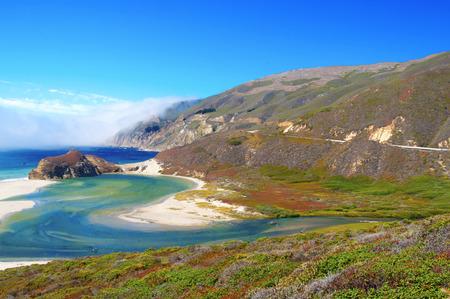blue whale: Big Sur Coast, California