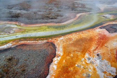 Colors by Thermophililc Bacteria, Yellowstone National Park, Rocky Mountains, USA photo