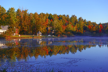 森と湖の反射の秋紅葉の秋の色