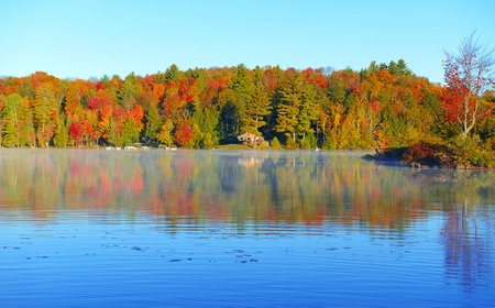 Autumn Foliage Fall Color in Forest and reflection in lake