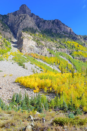 Autumn Color with Fall Foliage, Rocky Mountains, Colorado  photo