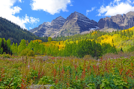 アスペンの木、あずき色の鐘、コロラド州ロッキー山脈と秋の紅葉