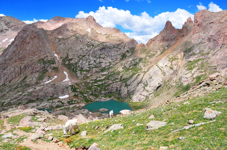 silverton: Chicago Basin and the Needle Mountains, Colorado Rockies  Stock Photo