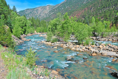 River in the Rocky Mountains  photo