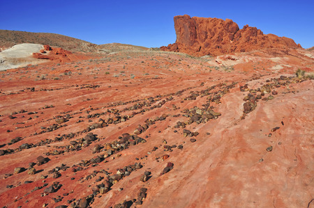 Red Rock Landscape, Southwest USA  photo