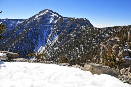 Mount Charleston, Nevada, USA Фото со стока