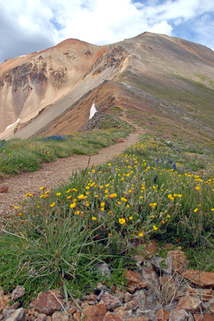 rocky mountains colorado: Hiking Trail in the Rocky Mountains, Colorado