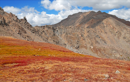 Fall Color near Mount Harvard in the Sawatch Mountains, Colorado photo