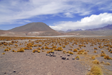 Mountans and Desert Landscape, Atacama Desert, Chile photo