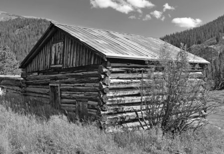 homestead: Old log cabin in abandoned mining town, Western USA Stock Photo