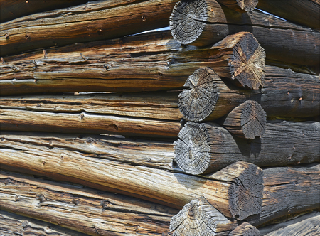 western usa: Detail on Old log cabin in abandoned mining town, western USA
