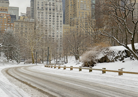 blustery: Central Park with snow and Manhattan skyline, New York City