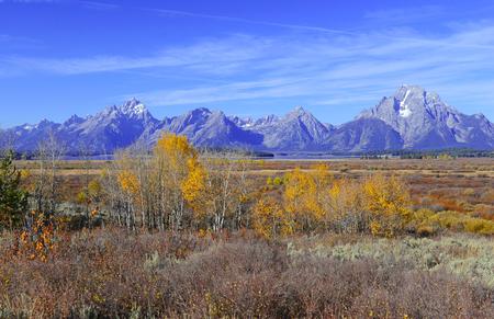 rocky mountains: Autumn foliage in the Rocky Mountains