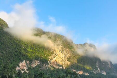 forested: Morning mist on the forested cliffs by the lake Cheow Lan, Thailand