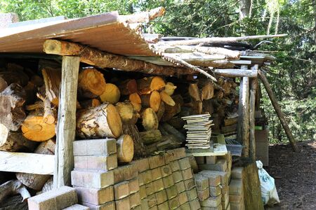 Stacks of wood for fire, in the woods of Trentino Alto Adige Stock Photo