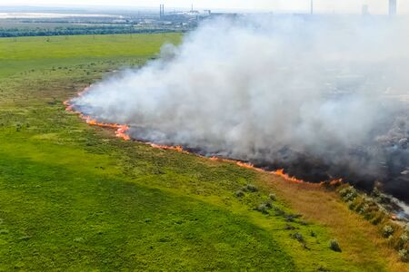 Steppe fire. Burning dry grass, fire and smoke