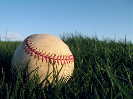 spring training: Baseball Resting in Field of Grass