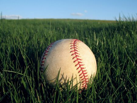 Baseball in Lush Greeen Grass photo