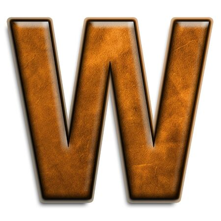 leather texture: Individual letter W in leather brown 3D