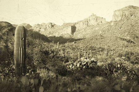 western usa: Old western USA desert landscape Stock Photo