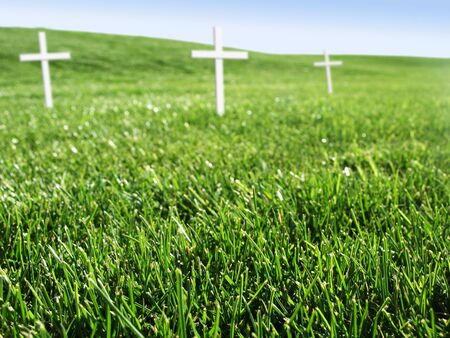 Open grass field with memorial white crosses