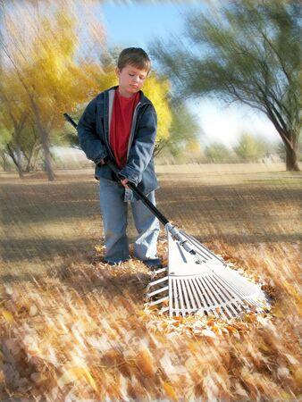 Unhappy boy raking autumn leaves in yard Stock Photo - 3358085