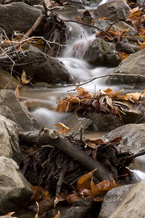 trickling: Water trickling down stream