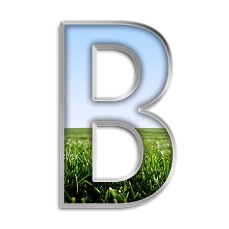 silver grass: Capital letter B made of grass & blue sky