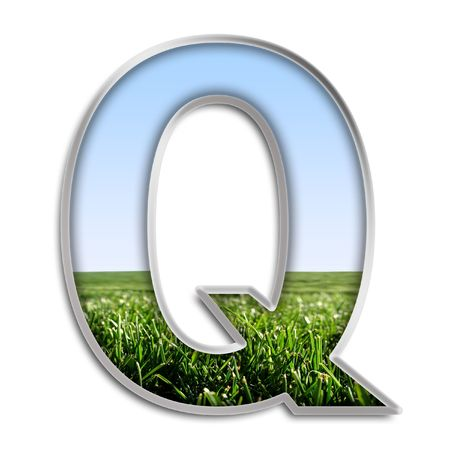 silver grass: Capital letter Q made of grass & blue sky