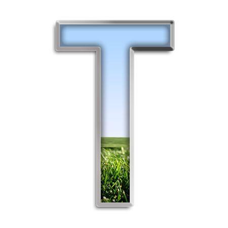 CAPITAL LETTER T aus Gras und blauer Himmel Standard-Bild - 4264007