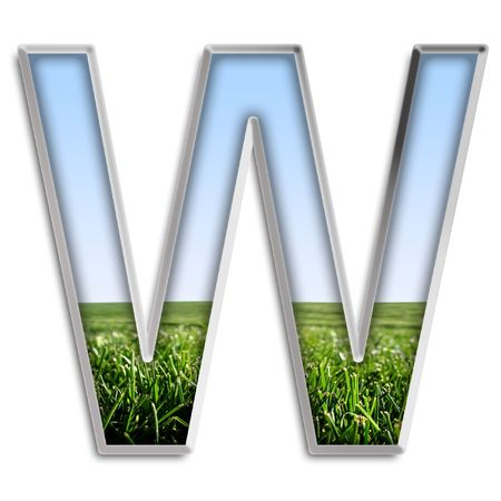 Capital letter T made of grass & blue sky Stock Photo - 4264029