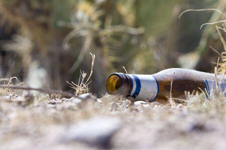 Beer bottle discarded in desert Stock Photo - 4843851
