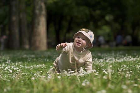 experiencing: A baby is sitting on a flowery meadow, experiencing the surrounding nature by touching the flowers and harvesting the grass. Stock Photo