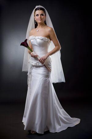 long shots: Studio Ritratto di una giovane sposa indossava un abito bianco con velo di nozze, fiori azienda.