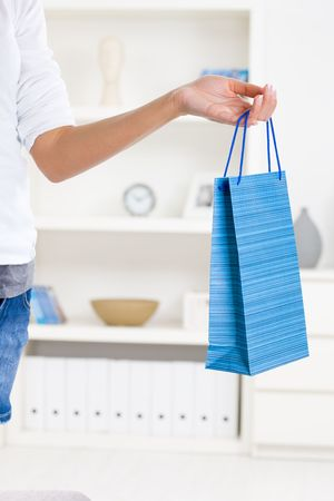 Beautiful female hand holding shopping bag in living room. photo