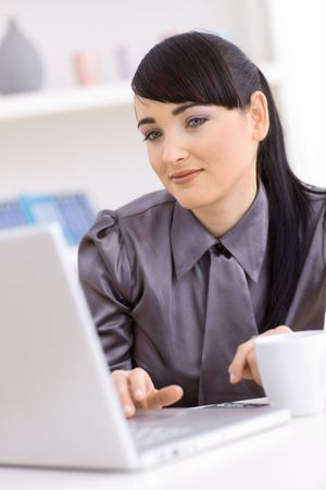 Young businesswoman working on laptop at home. Stock Photo - 5767139