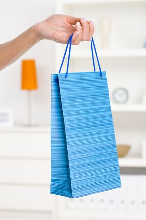 Beautiful female hand holding shopping bag in living room. Stock Photo - 5932550