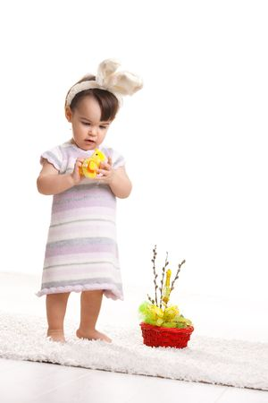 Baby girl in easter bunny costume, standing beside easter basket and playing with toy chicken. Isolated on white background. photo
