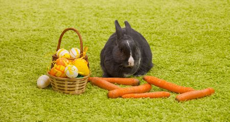 Easter Bunny with eggs, basket and carrots on green grass like carpet. photo