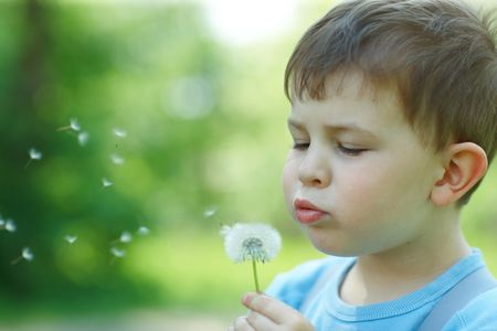 Four years old child blowing Dandelion seed outdoor in spring garden. photo