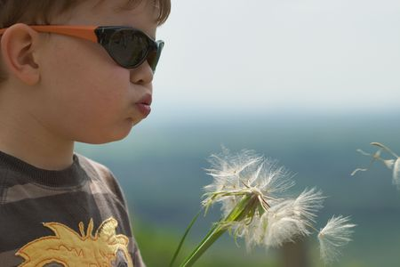 4 5 year old: Four years old child blowing Dandelion seed outdoor in spring garden.